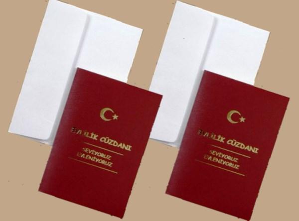 Документы для регистрации брака с гражданином Турции