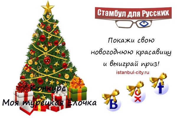 Моя турецкая Ёлочка или конкурс МтЁ для русских в Турции