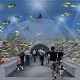 В Стамбуле открыли тематический аквариум