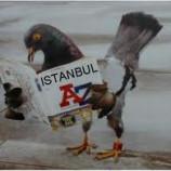 В Стамбул с красавицей-дочкой – не беда