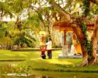 Что нужно знать об Индонезии. Факты быта и характера