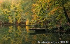 Осенняя Турция: ода природе в Болу