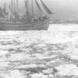 Суровая зима Стамбула в 1929 году