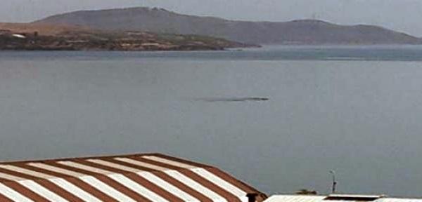 Монстр в озере Ван