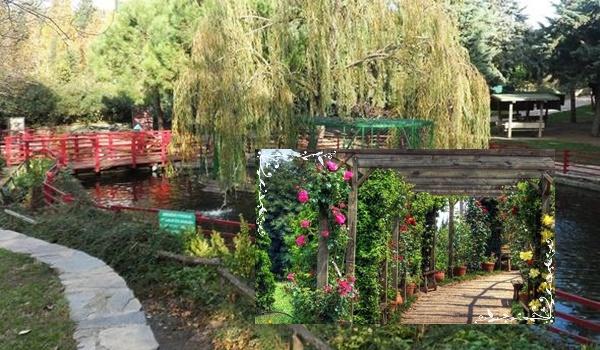 Ботанический сад Незахат Гёкйигит